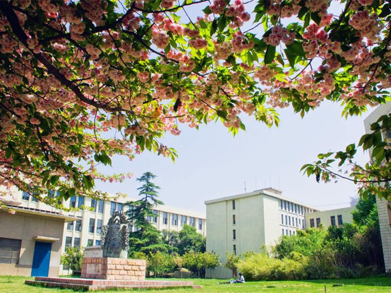 西安交通大学校园风光二